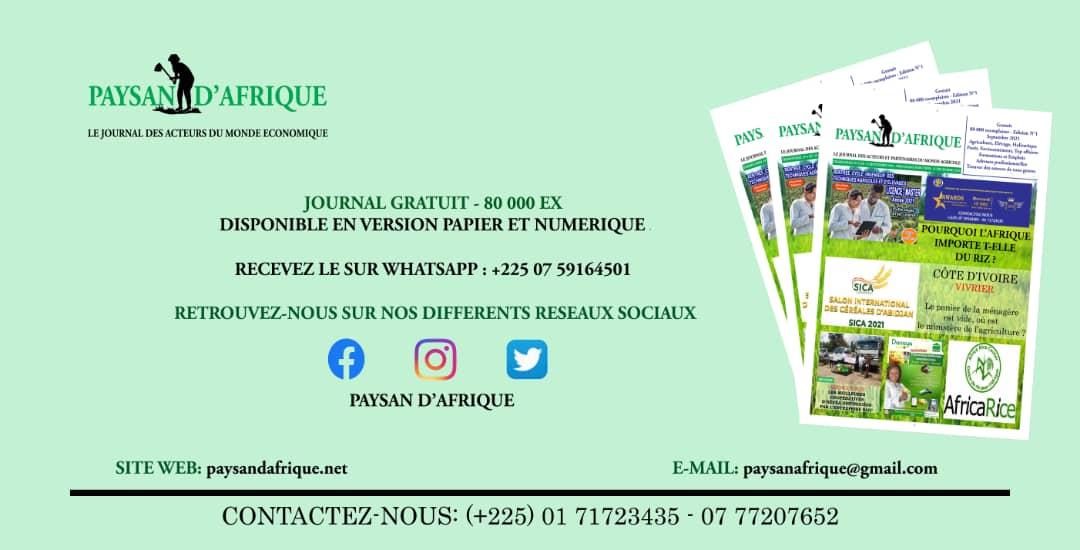 Flyers-PAYSAN-DAFRIQUE1-10