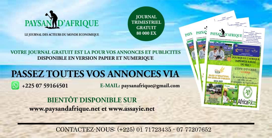 flyers-passer-annonces1-PAYSAN-DAFRIQUE-6